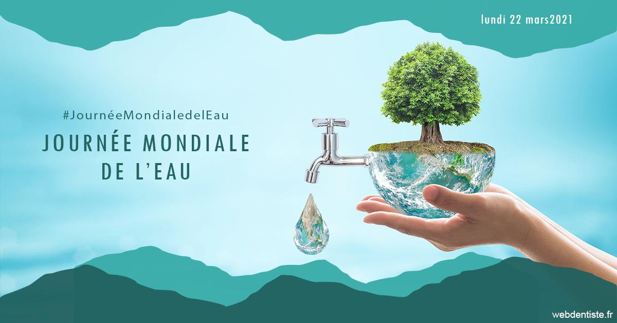 https://dr-langlade-philippe.chirurgiens-dentistes.fr/Journée de l'eau 1